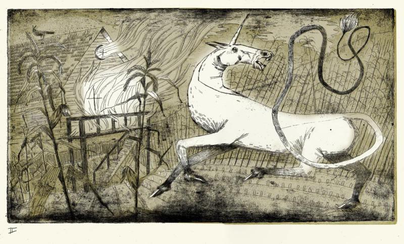 Allison Heckman, etching, digital manipulation