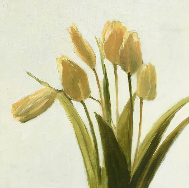 Donna Baldassari - Tulips in Light - 2018 - oil - 16x16 - $800