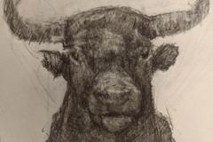 Jeffrey Casto - Minotaur - 2019 - Pencil on Paper - 5x4 - $100