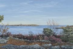 Thatcher Island from Eden Road