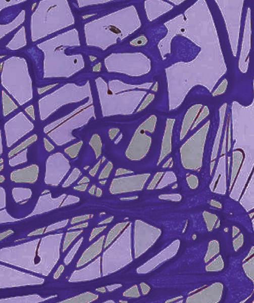 2Nail-Polish-Painting-Purple