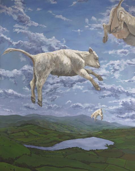 The Last White Cow in Wales, 8/25/20, 11:44 AM,  8C, 7072x8372 (235+908), 100%, New Art 3,  1/20 s, R124.2, G93.2, B104.0