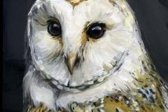 Watters, Alyssa - Barn Owl - 2017