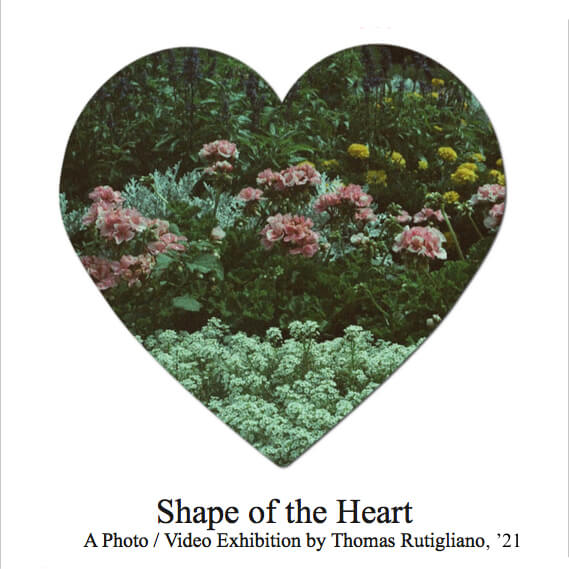 Shape of the Heart