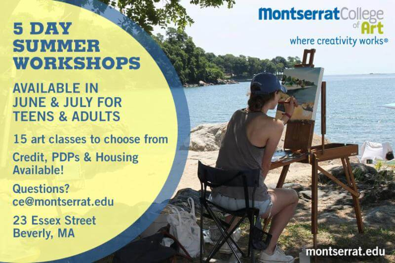 5 Day Summer Workshops
